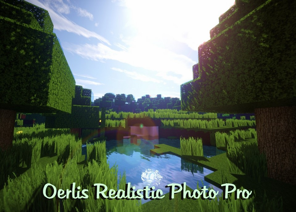 Oerlis Realistic Photo Pro Resource Pack 1 13 1 12 2