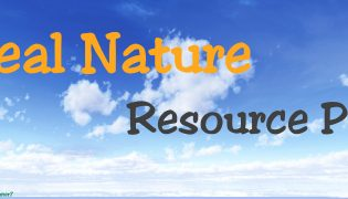 Real Nature Resource Pack 1.12.2