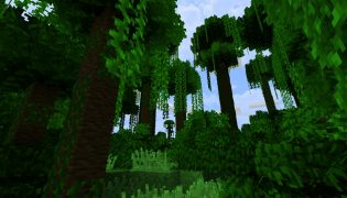 Naturus Resource Pack 1.16 / 1.15